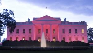 US-POLITICS-HEALTH-BREAST-CANCER