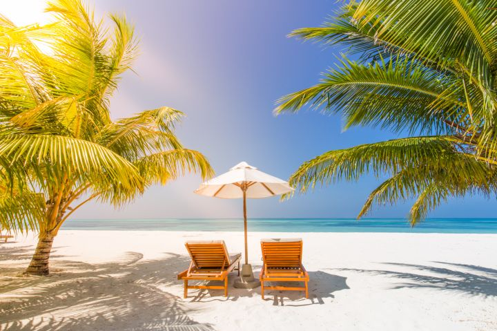 Maldives paradise beach. Perfect tropical island. Beautiful palm trees and tropical beach. Moody blue sky and blue lagoon. Luxury travel summer holiday background concept.